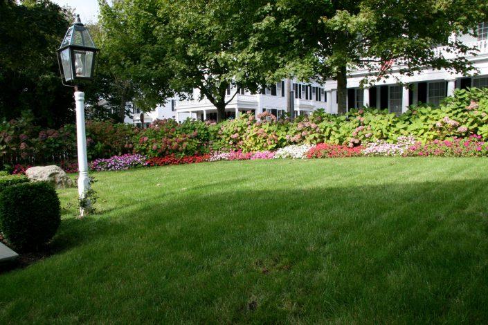 Tea Lane Nursery - Landscape Design, Organic Landscaping, & Maintenance